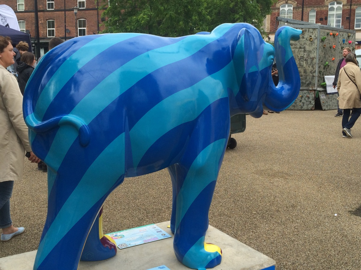 WildinArt have been involved in the Sheffield elephant project, Hull toads and moths and Liverpool Lambannas. WHAT IS NEXT …..?